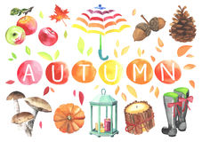 Set Of Watercolor Cute Autumn Elements Stock Photos