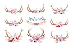 Set Of Watercolor Floral Boho Antler Print. Western Bohemian De Stock Image