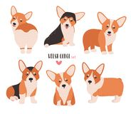 Free Set Of Welsh Corgi In Different Postures. Small Cute Dog Of Herding Breed Isolated On White Background. Funny Pet Animal Stock Photos - 101924103