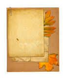 Set of old archival papers and vintage postcard. With autumn foliage on white isolated background Stock Photo