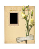 Set of old archival papers and vintage postcard with bouquet Stock Photo