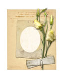 Set of old archival papers and vintage postcard with bouquet Royalty Free Stock Image