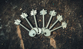 A set of old fashioned keys on a background of an old wooden stump. The decor in rustic style Stock Image
