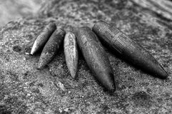 Set of old gray bullets on a stone surface Stock Photos