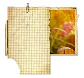 Set of Old photo paper texture isolated on background stock images