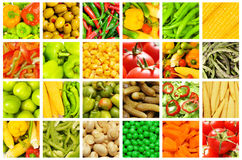 set olika grönsaker Royaltyfri Foto