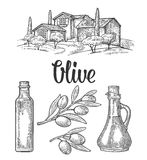 Set olive. Bottle glass, branch with leaves, rural landscape villa Stock Photography