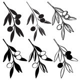 Set of olive branch  isolated on white background. Hand drawn ve Royalty Free Stock Photos
