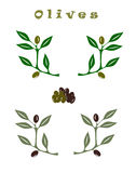 Set of Olive branches Royalty Free Stock Photos
