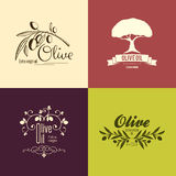 Set of olive label and logo design Royalty Free Stock Photos