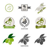 Set of olive oil labels and design elements. Stock Image