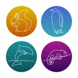 Set of 4 one line animals icons or logos. Squirrel, pinguin, dolphin, chameleon. royalty free illustration