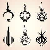 Set of onion icons in different graphic styles Stock Image