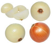 Set onions isolated on white Royalty Free Stock Images