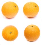 Set orange Stock Photo