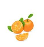 Set Orange Fruits, Cut and Slices Royalty Free Stock Photos