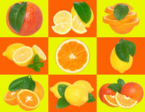 Set orange and lemon on a checkered background. Stock Photos