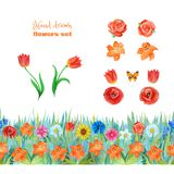 Set of orange and red flowers. Poppies, tulips, roses,lilies. Seamless floral border royalty free illustration