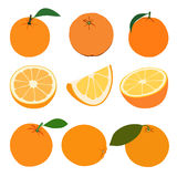 Set of oranges. Royalty Free Stock Photos