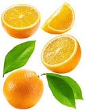 Set of oranges isolated on the white background Stock Photos