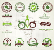 Set of organic badges and labels. Set of organic and farm fresh food badges and labels Vector Illustration