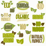 Set of organic, eco and bio labels Stock Photography
