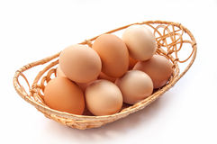 Set of organic eggs Royalty Free Stock Photo