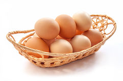 Set of organic eggs Royalty Free Stock Photography