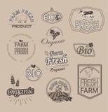 Set for organic and farm fresh food. Set of badges and labels elements for organic fnd farm fresh food, vector royalty free illustration