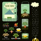Set of organic and farm fresh food badges and Royalty Free Stock Photography