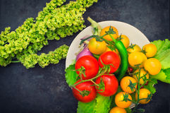 Set organic food. Fresh raw vegetables for salad. On a old blue background. Top view. Close-up. Set organic food. Fresh raw vegetables for salad. On a old blue Stock Images