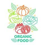 Set of organic food fruit and vegetable logo card templates. Organic food, fruit and vegetable logo, card design, vector illustration  on white background Royalty Free Stock Photo