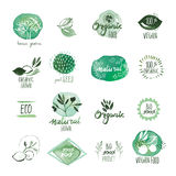 Set of organic food hand drawn watercolor stickers and badges Stock Photos