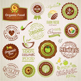 Set of organic food labels and elements Stock Images