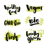 Set of organic food stickers. Vector labels for bio products. GMO-free sign, locally grown, healthy food symbol. Set of organic food stickers. Vector labels for Royalty Free Stock Photos