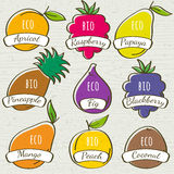Set of organic  fruit, vector Stock Photos