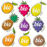 Set of organic  fruit, vector Stock Image