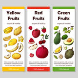 Set of organic fruits cards. Hand drawn sketch elements. Banner collection template. Farm company. Vector illustration Royalty Free Stock Images
