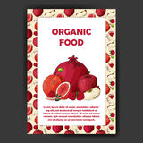 Set of organic fruits cards. Hand drawn sketch elements. Banner collection template. Farm company. Vector illustration Royalty Free Stock Photo