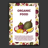 Set of organic fruits cards. Hand drawn sketch elements. Banner collection template. Farm company. Vector illustration Stock Photography