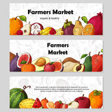 Set of organic fruits cards. Hand drawn sketch elements. Banner collection template. Farm company. Vector illustration Stock Photo