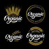 Set of Organic hand written lettering logos, labels, badges or emblems for natural fresh products. Stock Image