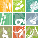 Organic icons Royalty Free Stock Image