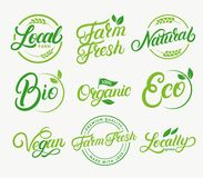 Set of organic, local farm, farm fresh, natural product, bio, vegan hand written lettering logos, labels, badges, emblems. Royalty Free Stock Photos