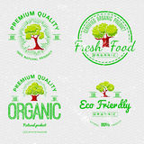Set Organic Natural Ecology stickers Royalty Free Stock Images