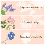 Set of organic product labels. Vector set of organic product labels with flowers. Sage, dog rose and flax. Design for cosmetics, store, natural and organic Stock Images