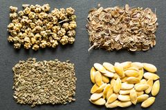 A set of organic seeds for natural farming.  royalty free stock photos
