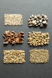 A set of organic seeds for natural farming, vertically.  royalty free stock images
