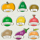 Set of organic vegetable and fruit, vector Royalty Free Stock Image
