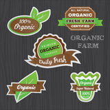 Set of Organic vegetables logo sticker design Stock Images